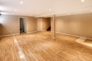 2360_rue_du_capitaine_bernier_MLS_HID619101_ROOMsoussolbasement
